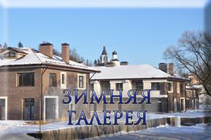 Староникольское зимняя галерея
